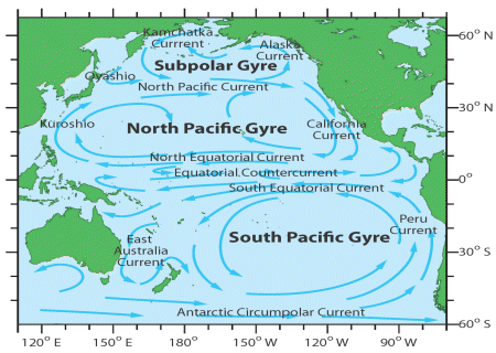 pacific-gyres
